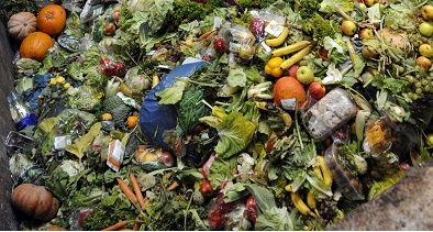 En pos de ganancias se prefiere tirar a la basura toneladas de alimentos